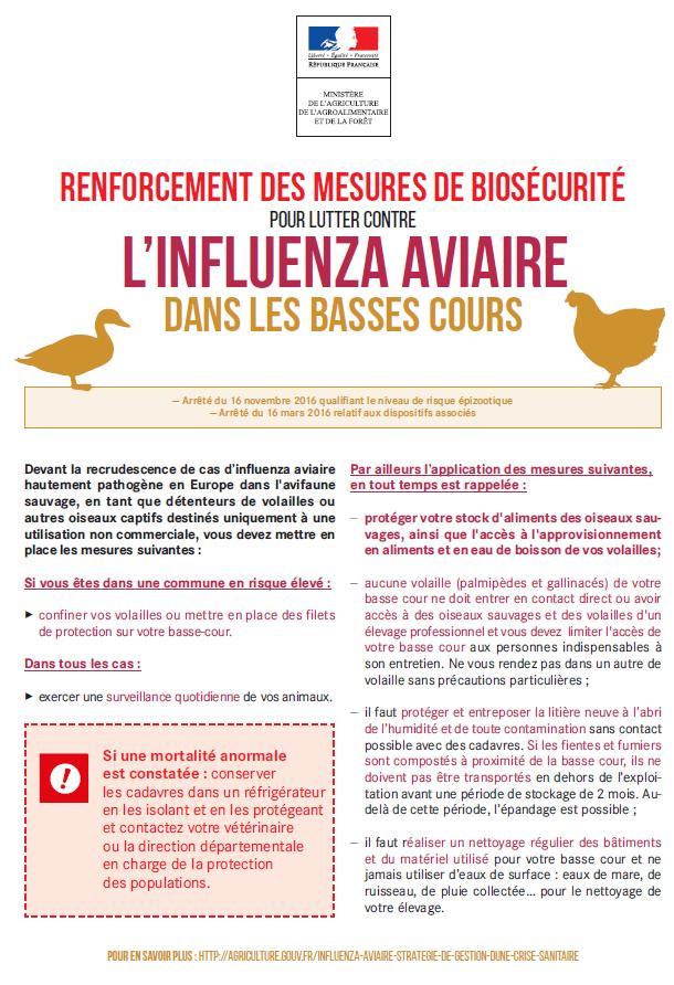 info-influenza-aviaire